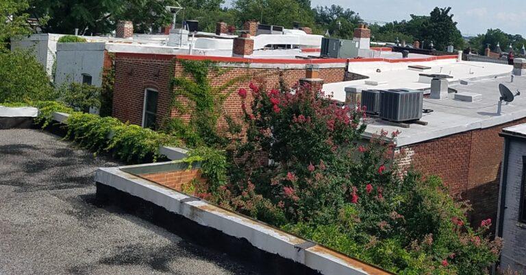 Roof coping repair