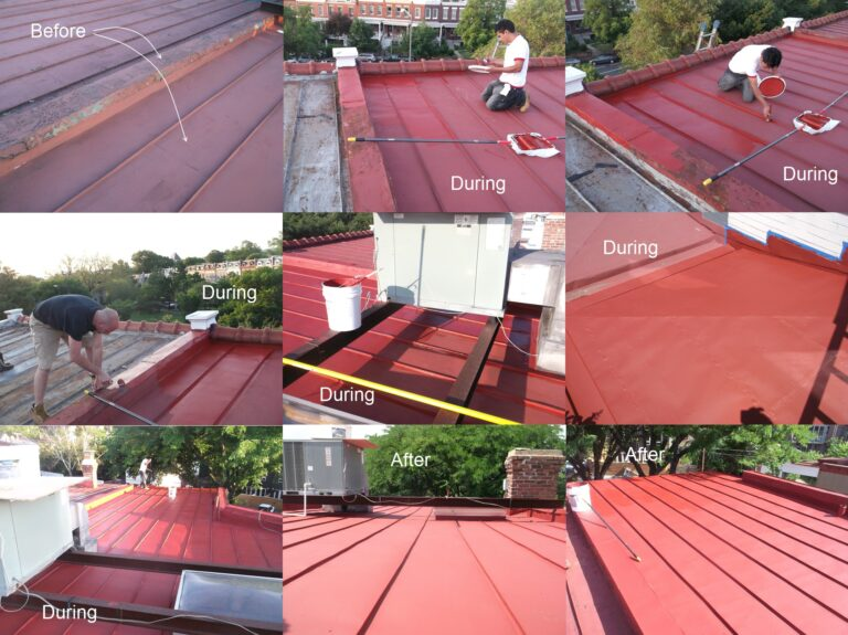 Terne roof recoating